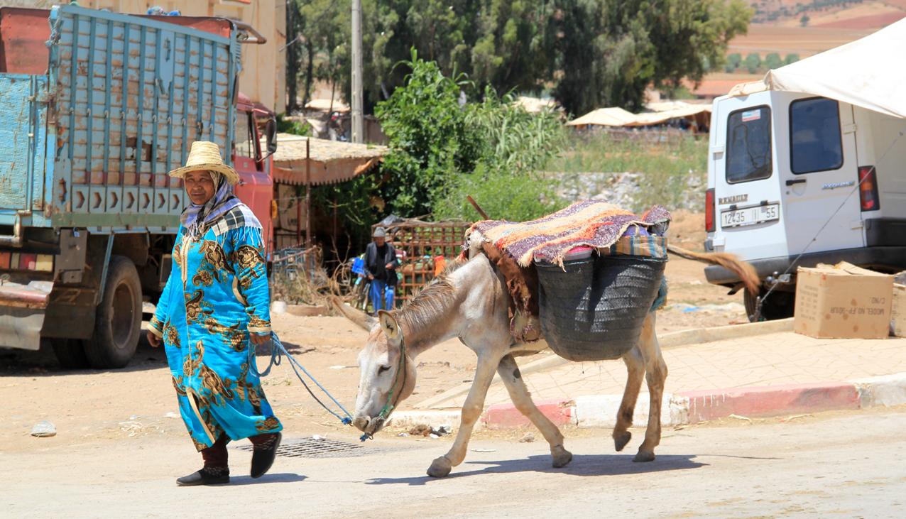 193 De Mohammedia à Meknes