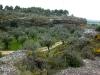 el-rincon-del-olivar-13