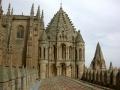 Salamanque 39 Cathédrale tours