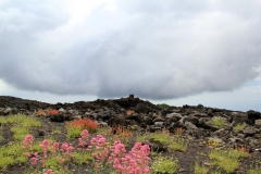 410. Etna
