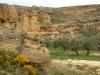 el-rincon-del-olivar-11