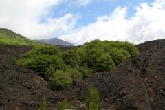 409. Etna